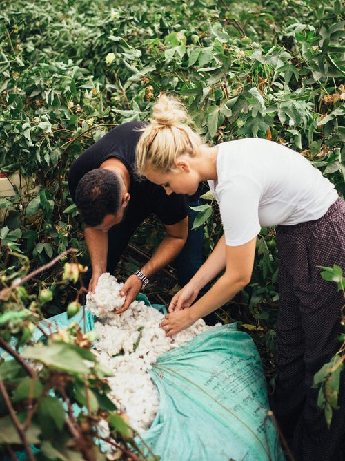 Mackenzie Yeates and Rami Helali in the Egyptian Cotton fields of the Nile Delta