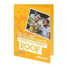 $765 can buy a rain catchment roof