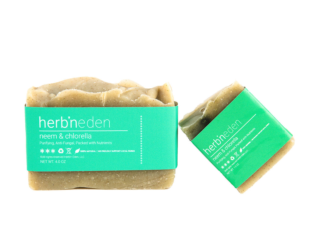 Unveiled: What makes our neem and chlorella soap so powerful