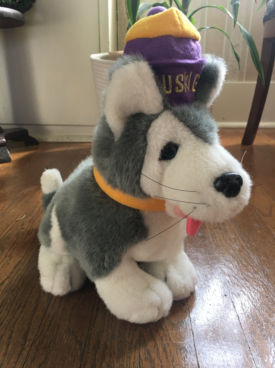Washington Huskies stuffed toy