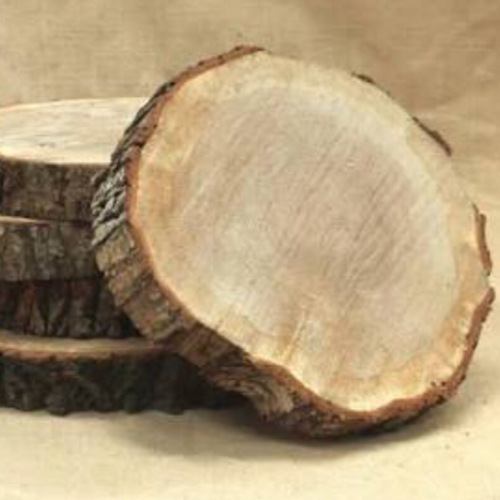 Log Slice - Centrepiece