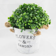 Planter flowers n garden - Hire