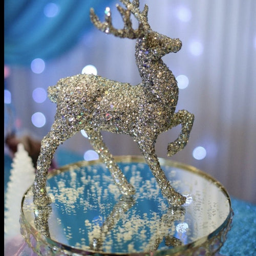 Party packages -Frozen Theme