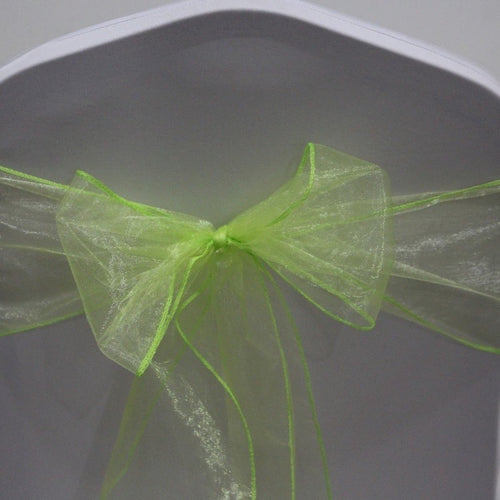 Organza Sash - Apple