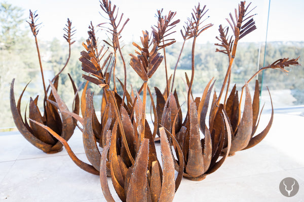 METAL ALOE SCULPTURE (South Africa)