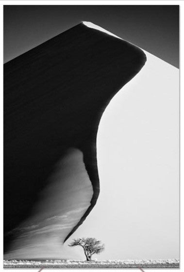 UNIQUE PHOTOGRAPHIC ART - BIG DADDY DUNE (Portrait)