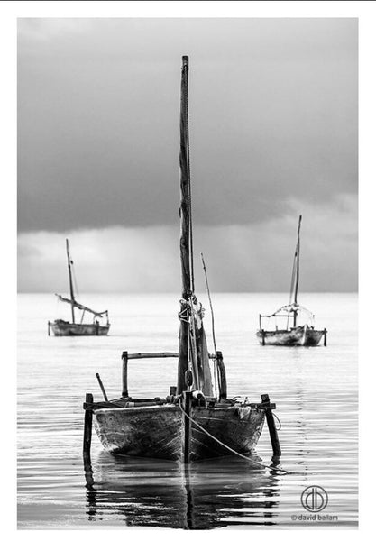 "UNIQUE PHOTOGRAPHIC ART - ZANZIBAR 15 ""3 DHOWS"" (Portrait)"