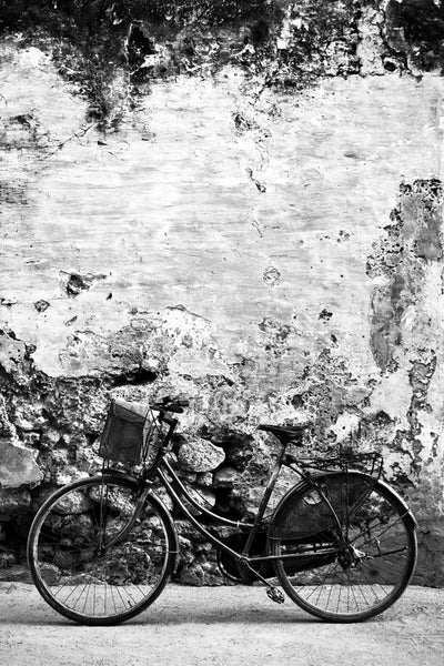 ARTWORK BALLAM 9B - BICYCLE IN MOZAMBIQUE