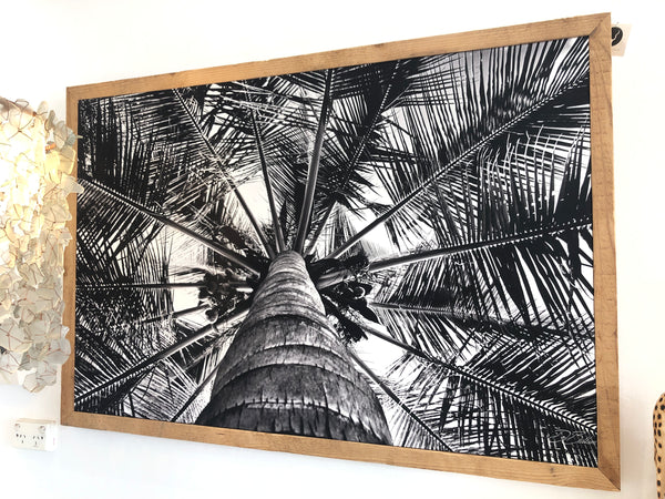 UNIQUE PHOTOGRAPHIC ARTWORK - PALM TREE IN MOZAMBIQUE