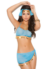 Harem Hottie Costume