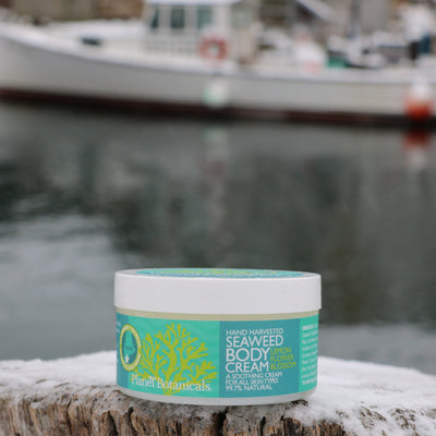 Maine Seaweed Dream Cream