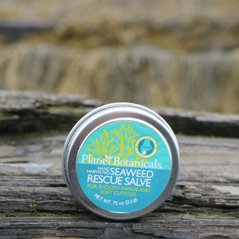 Seaweed Hand and Cuticle Rescue Salve