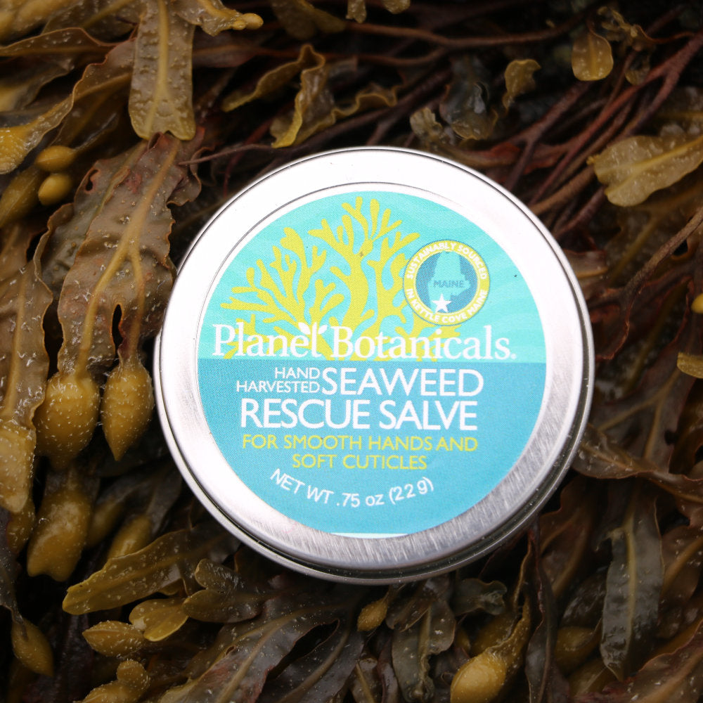 (New!) Seaweed Hand and Cuticle Rescue Salve
