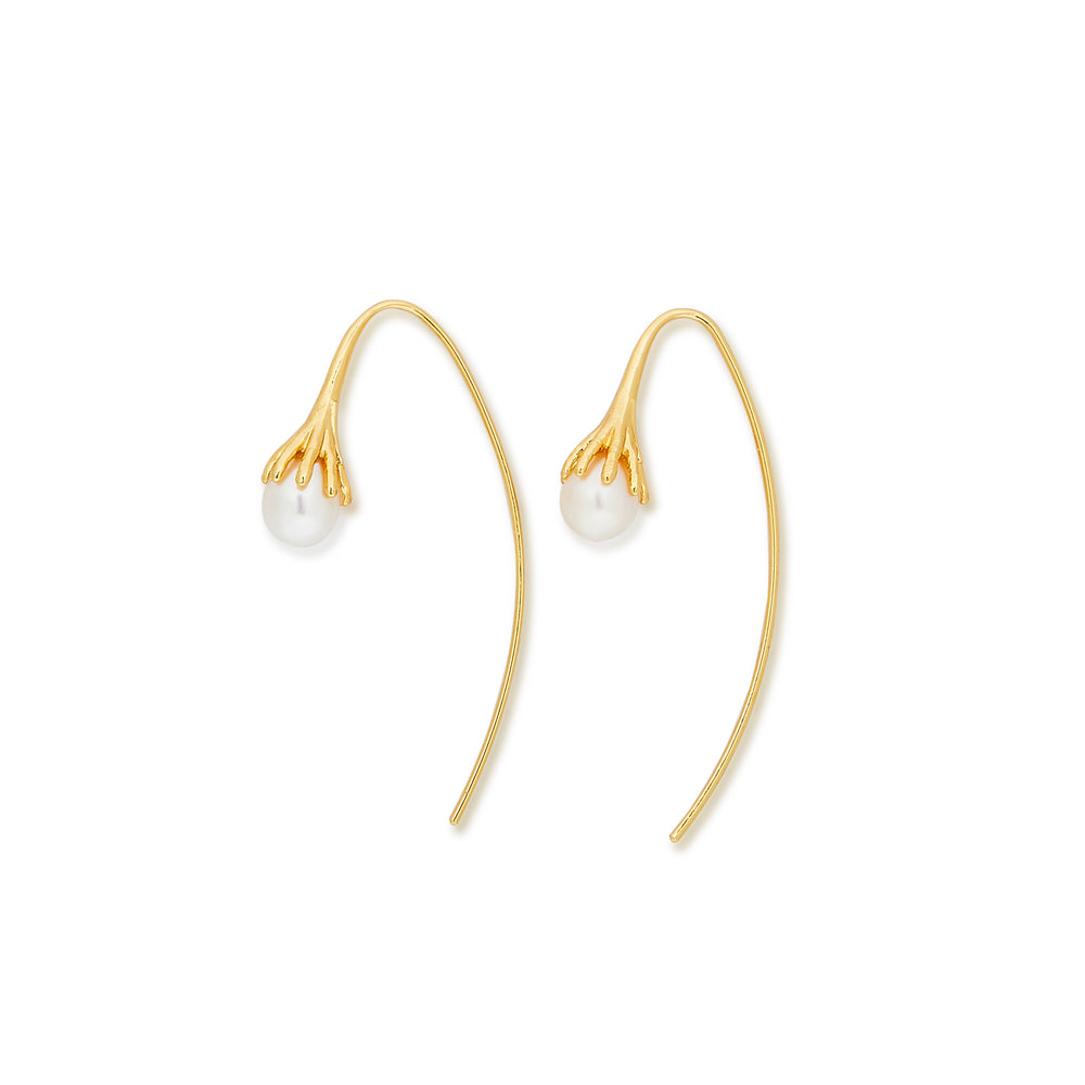 DROP Gold Freshwater Pearl Earrings