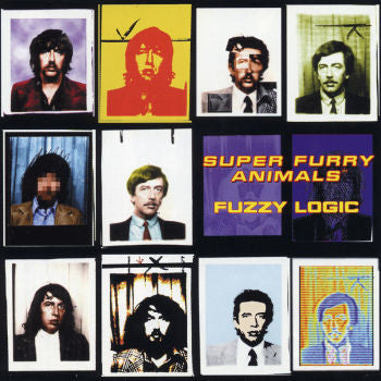 Super Furry Animals 'Fuzzy Logic' LP