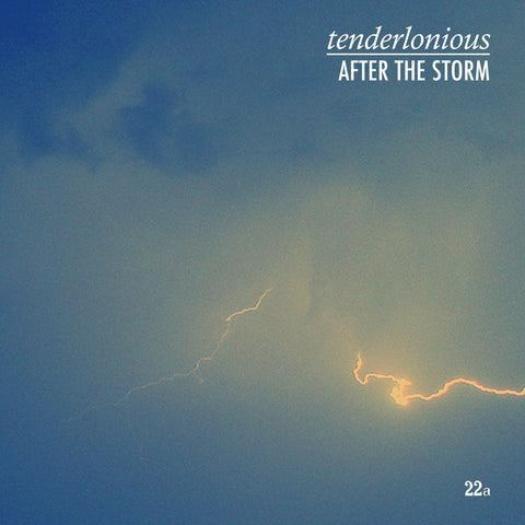 Tenderlonious 'After The Storm' 12""