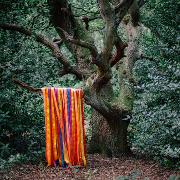 James Holden & The Animal Spirits 'The Animal Spirits' 2xLP