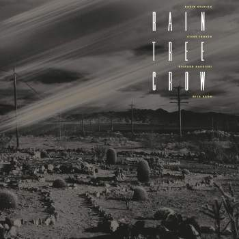 Rain Tree Crow 'Rain Tree Crow' LP