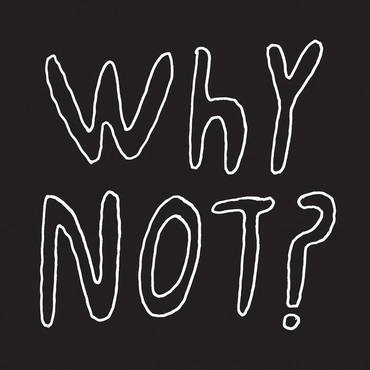 Half Japanese 'Why Not?' LP