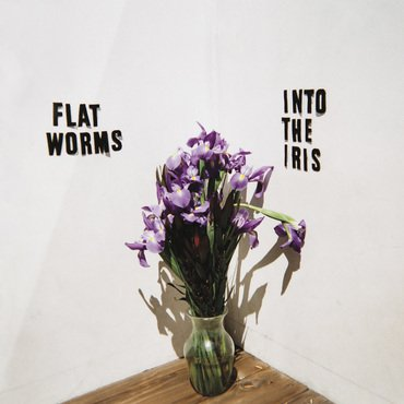 Flat Worms 'Into The iris' LP