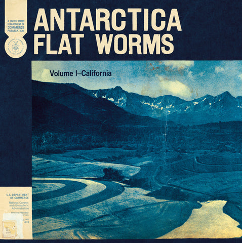 Flat Worms 'Antartica' LP