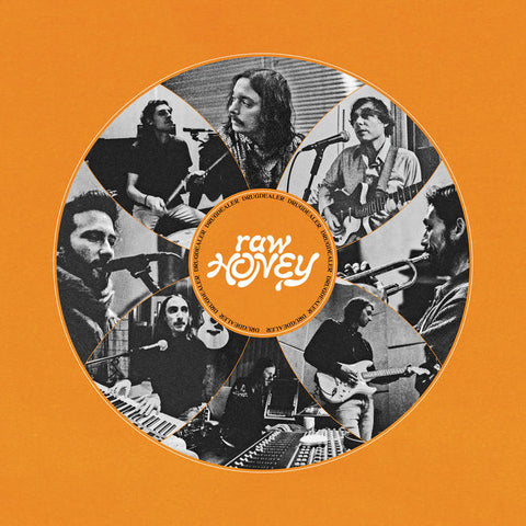Drugdealer 'Raw Honey' LP