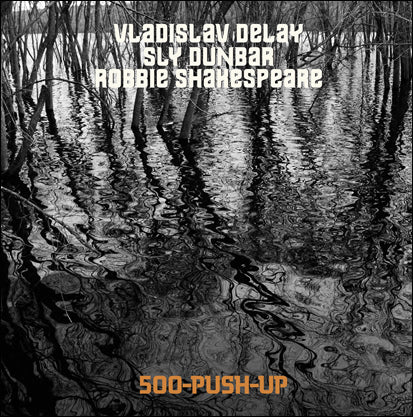 Vladislav Delay Meets Sly & Robbie '500 Push Up' LP