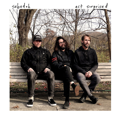 Sebadoh 'Act Surprised' LP