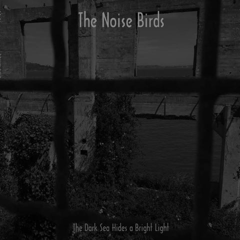 The Noise Birds 'The Dark Sea Hides A Bright Light' LP