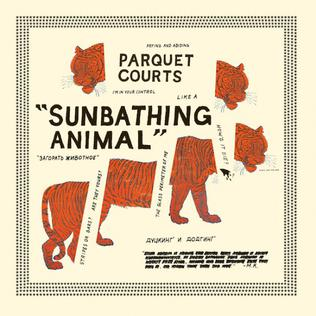 Parquet Courts 'Sunbathing Animal' LP