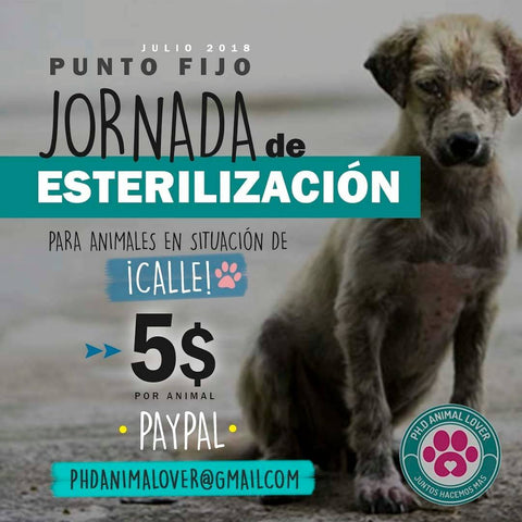 "Donation ""PH.D Animal Lover"" Foundation"