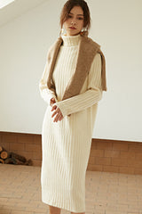 Women Vintage Turtleneck Sweater Dress