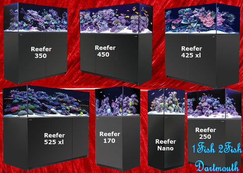 Red Sea Reefer Aquariums Systems