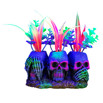 Marina iGlo Ornament - 3 Skulls with Plants  (5.5 in)