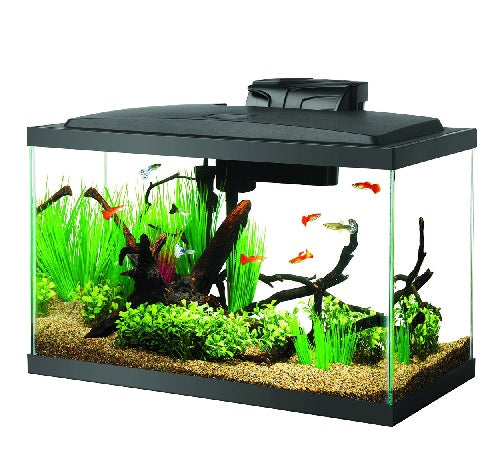 Aqueon LED Aquarium Kits