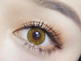 Circle lenses CICI Hee Love -  Queen four colors (brown)