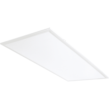RAB LIGHTING EZPAN2X4-50N/D10 LED Panel Light - Wholesale Home Improvement Products
