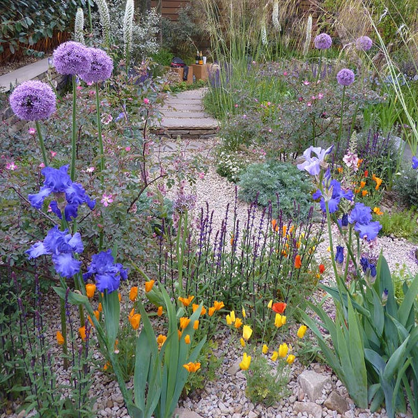 Show garden with irises at Chelsea Flower Show