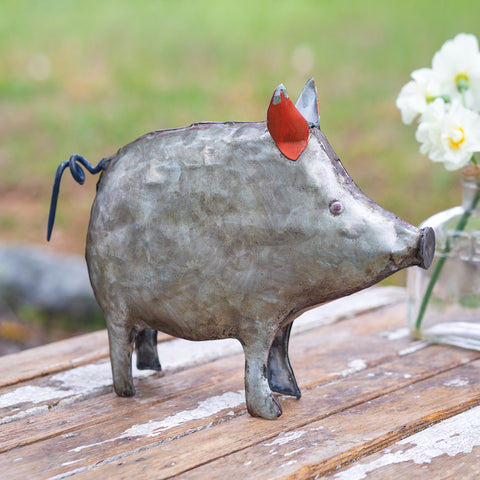 Galvanized Metal Pig