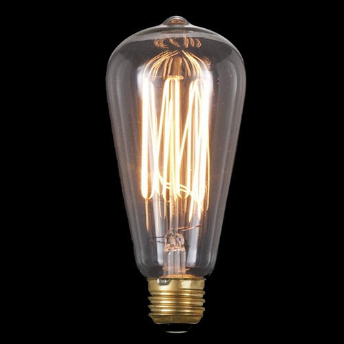 Vintage Style NEW Edison Base Squirrel Cage Filament Light Bulb 40 Watts