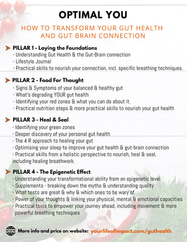 Gut Health & Gut Brain Connection Online Program
