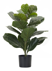 "Faux 27.5"" Fiddle Leaf in Potted Planter"