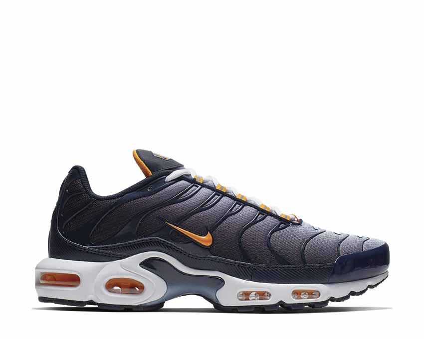 Nike Air Max Plus Dark Obsidian Orange Peel Obsidian Mist CI2299-400