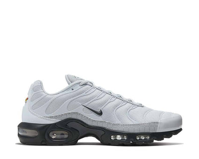 Nike Air Max Plus Pure Platinum / Black CT2542-001