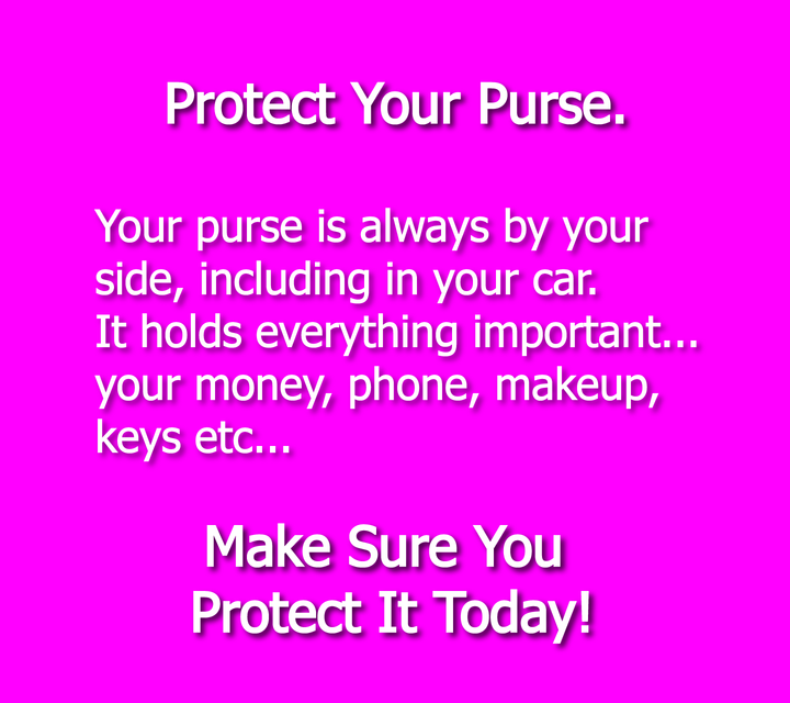 Protect Your Purse With Handy Hooky