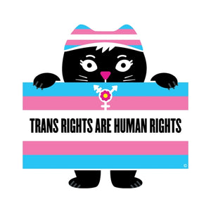 Trans Rights Flag Sticker