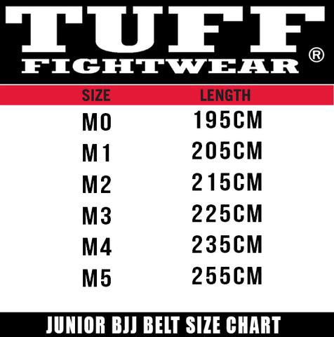 Kids BJJ Belts - GREY/WHITE