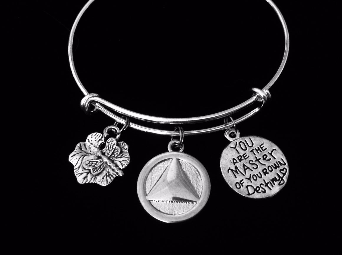 AA Recovery Jewelry Alcoholics Anonymous Adjustable Charm Bracelet Dragonfly Silver Expandable Wire Bangle One Size Fits All Gift