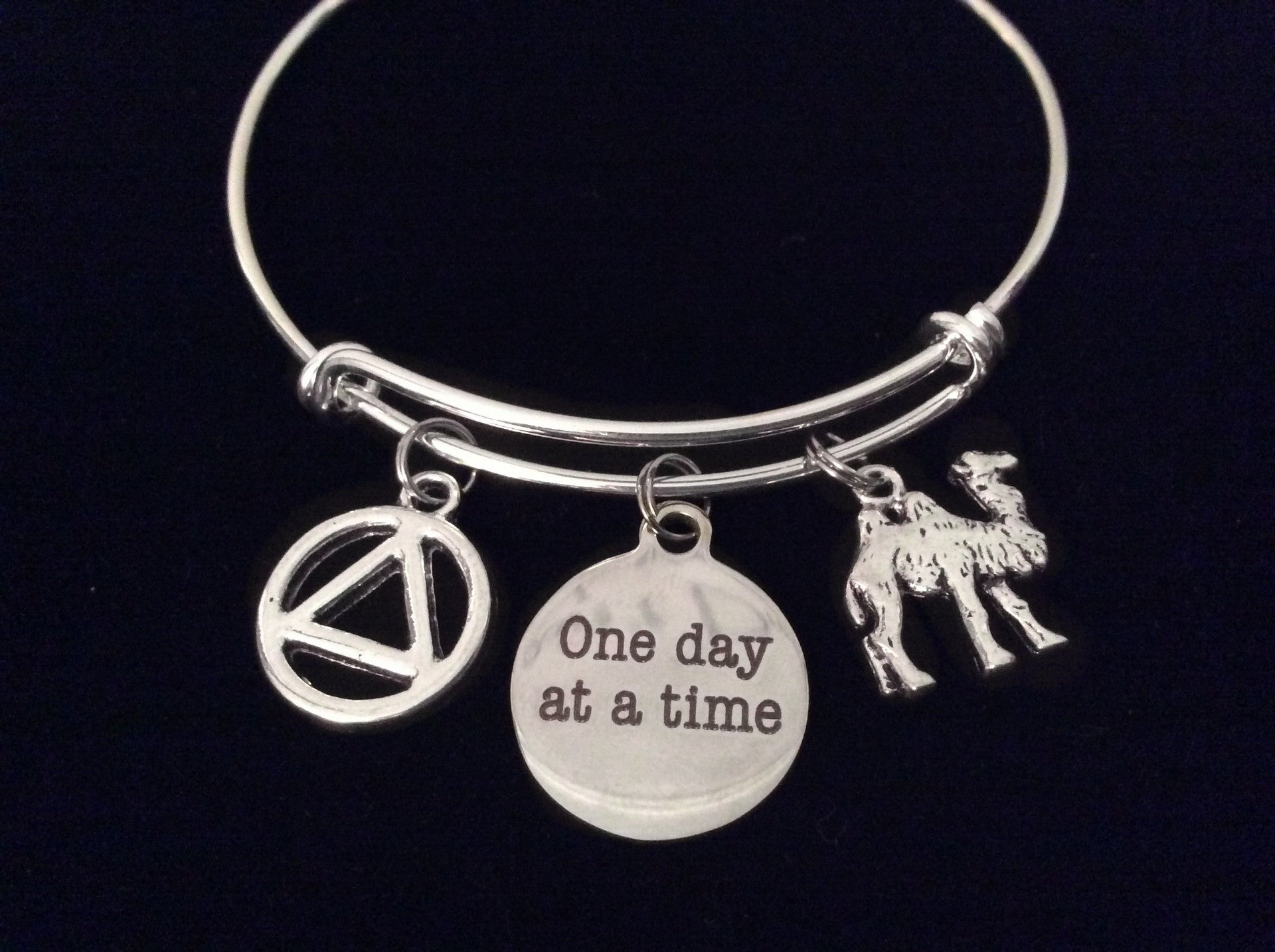 Camel AA Recovery Symbol e Day at a Time Adjustable Charm