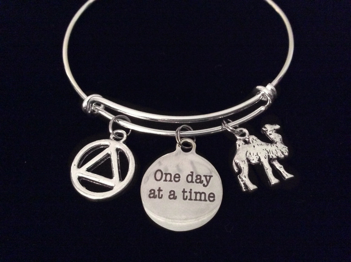 Camel AA Recovery Symbol One Day at a Time Adjustable Charm Bracelet Expandable Silver Wire Bangle Inspirational Meaningful